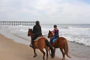 NEW FOR WEDNESDAY: Beach Horseback Riding Now Offered In OC