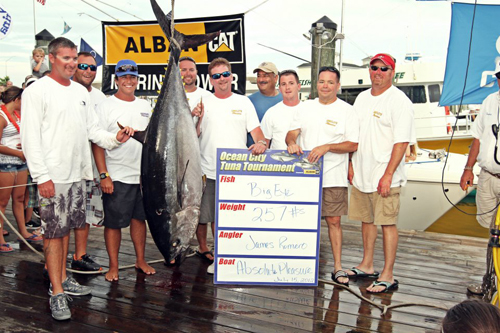 record_tuna_scale_shot