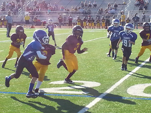 mitey mites pop warner