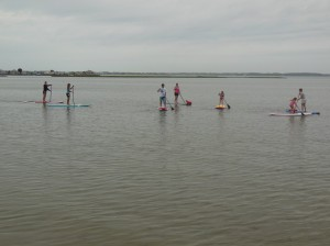 Standup Paddle boarders are pictured in the bay last summer. File Photo