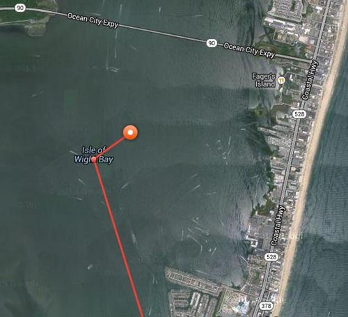 A screen shot of the two ping locations are shown. Image courtesy of OCEARCH