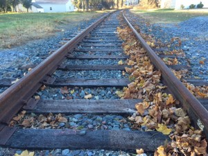 Excursion Train Study Spotlights Track Condition; Railroad Needs Improvements