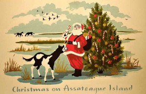 Examples of the Christmas cards dating back to the 1960s and 1970s are shown. The cards were recently reprinted in honor of Assateague Island National Seashore's 50th Anniversary. Submitted Photos