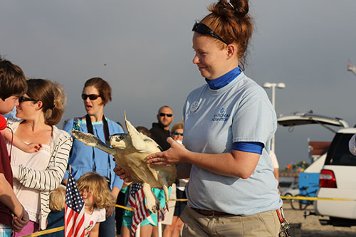 Amber White of the National Aquarium shows off one of the rehabilitated Kemp's Ridley turtles to onlookers at the Inlet last Friday. Submitted Photo