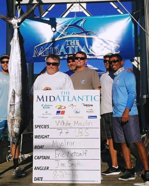 "As of mid-week, the Ocean City-based ""MJOLNIR"" sat in first place atop the white marlin leaderboard in the Mid-Atlantic Tournament with this 77-pounder temporarily worth over $1.2 million.  Photo courtesy Hook on OC"