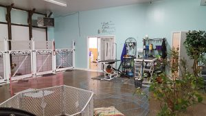 Owners Establish Permanent Site For Pet Grooming Business