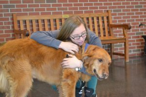 Maryland Coast Dispatch Therapy Dog Works His First Day Inside High School