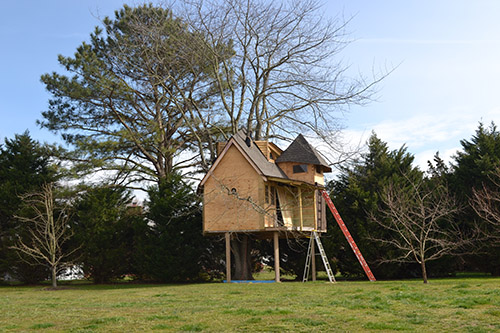 02 16 2017 Survey Needed To Determine Treehouse S Future