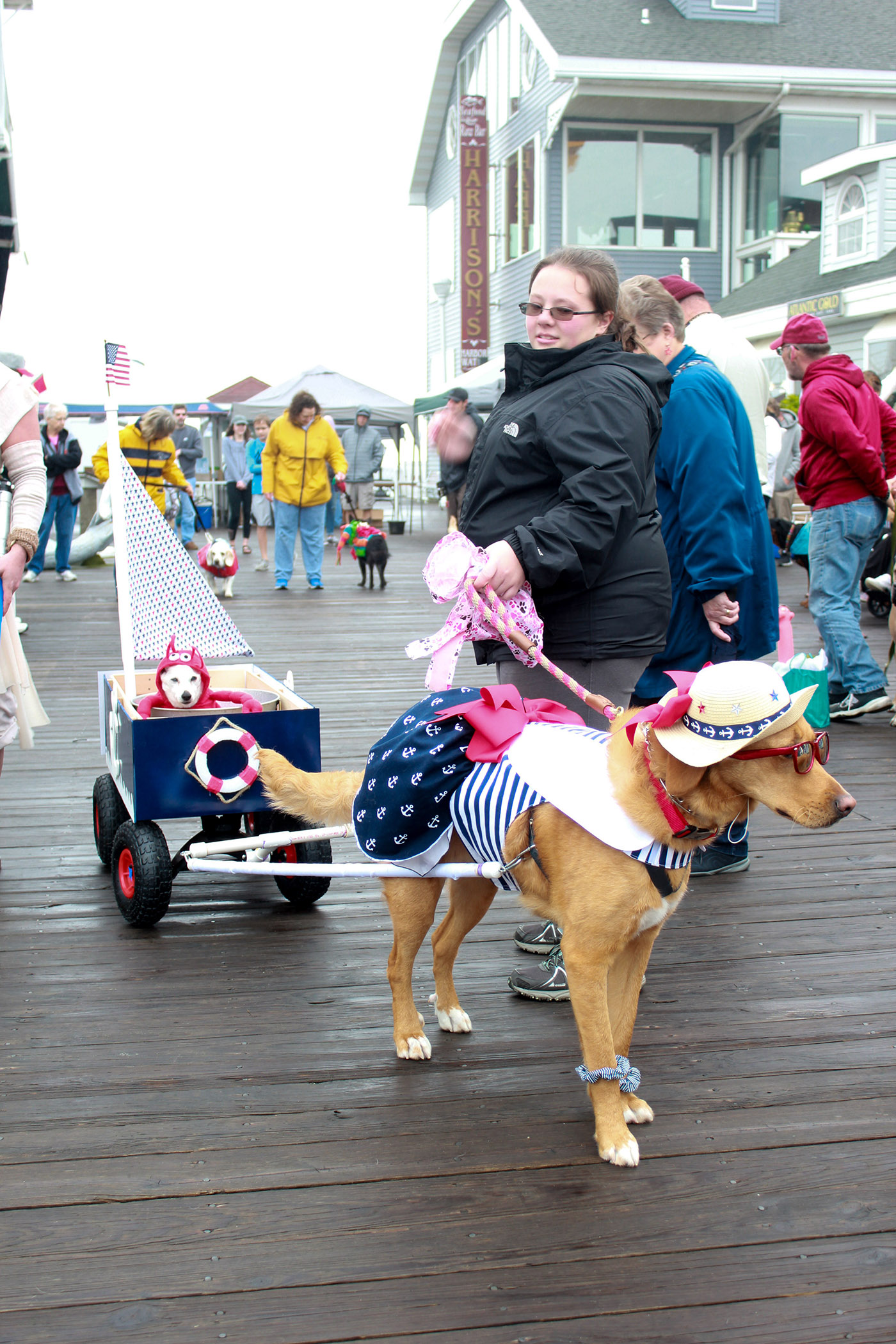 Boardwalkin' For Pets, Annual Dinner To Benefit Shelter