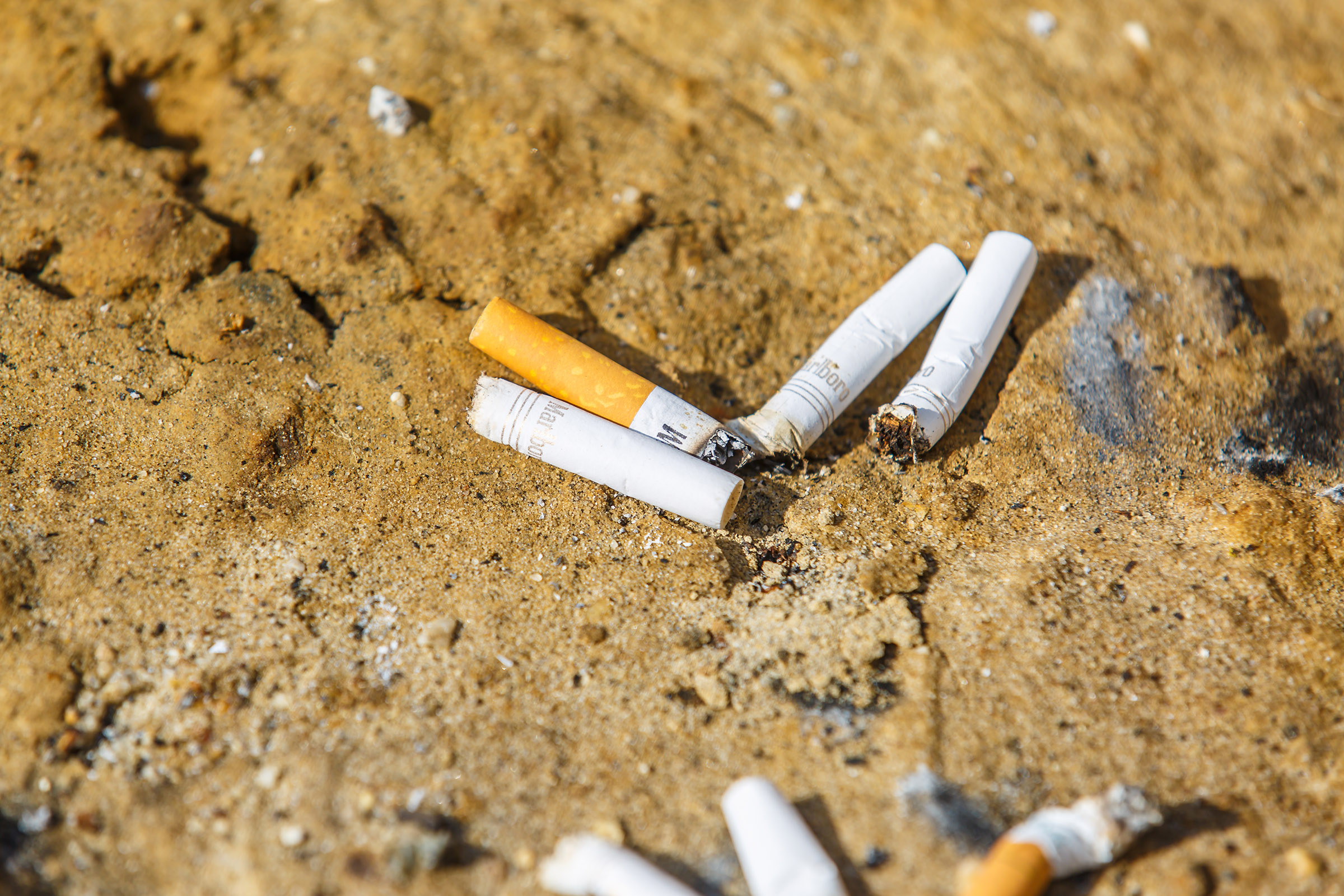 New Cigarette Butt Recycling Program Mulled For Ocean City